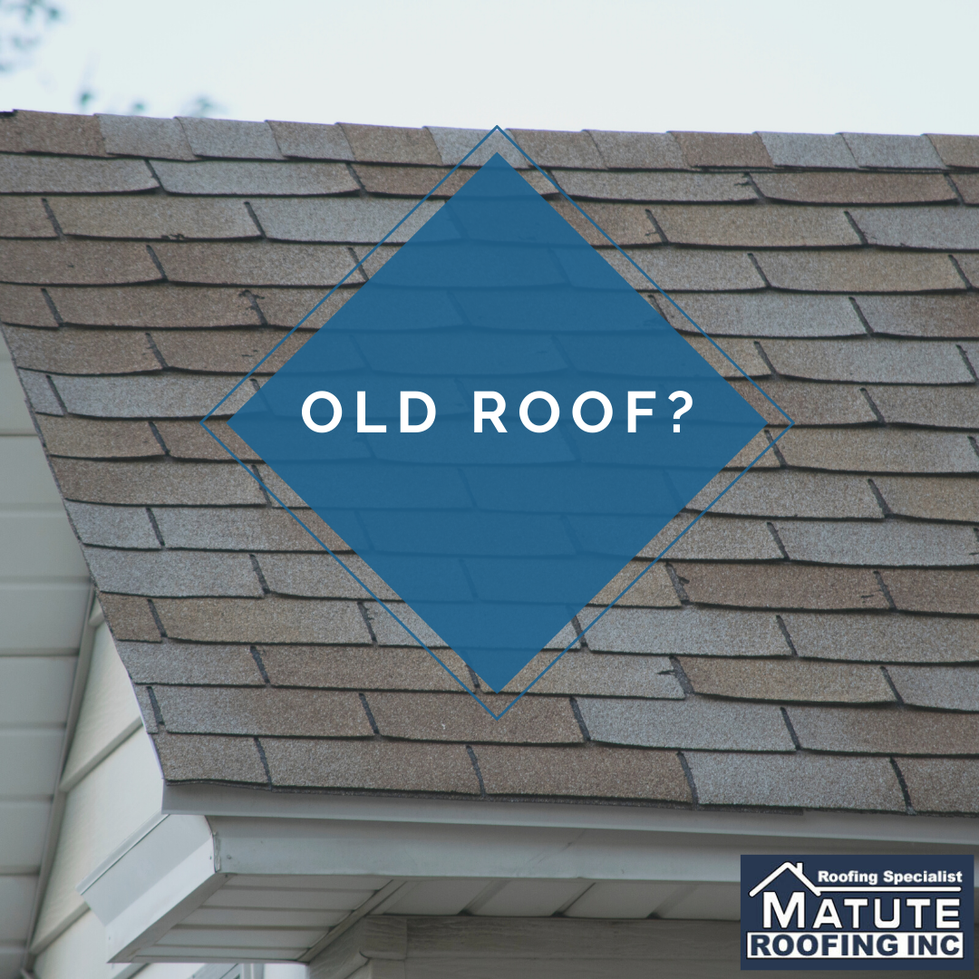 Shingle Roofs Typically Need To Be Replaced Every 20 Years If Your Roof Is Any Older Your Shingles May Be Worn And In 2020 Roofing Basics Roofing Specialists Roofing