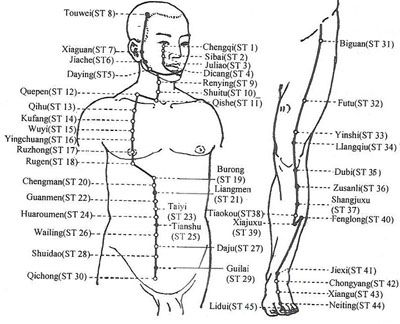 Stimulate weight loss with acupressure: Stomach36, Large