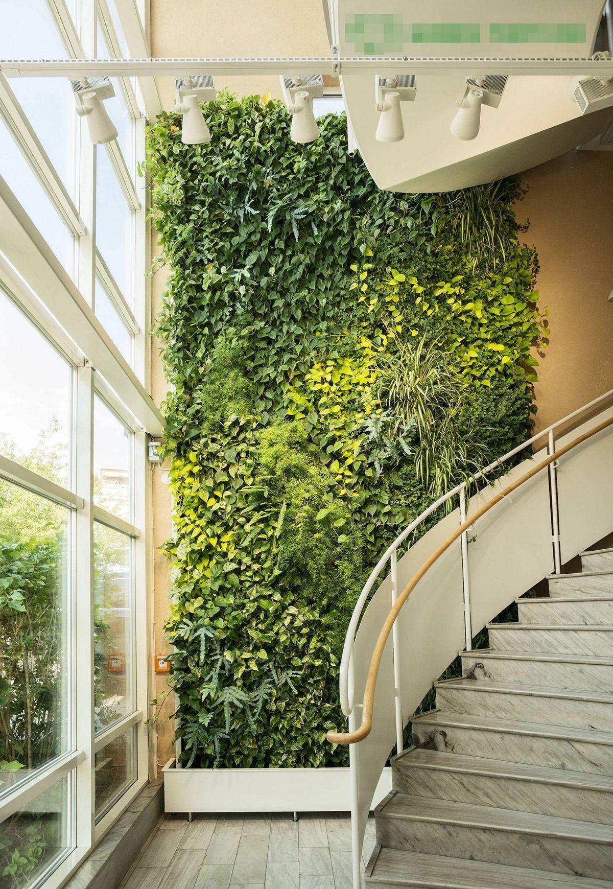Jardin Mural Ajoutez Du Vert Dans Le Siege Social In 2020 Vertical Garden Indoor Vertical Garden Design Vertical Garden