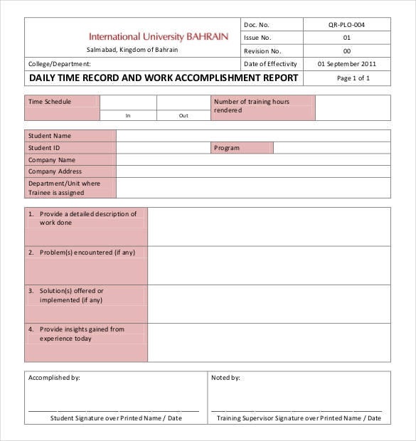 Daily Work Report Template 2 Professional Templates