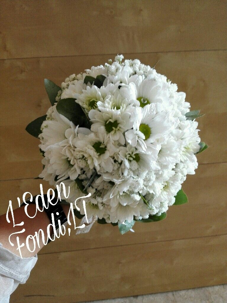Bouquet Margherite Sposa.Bouquet Sposa Con Margherite E Nebbiolina Bouquet Margherite Sposa
