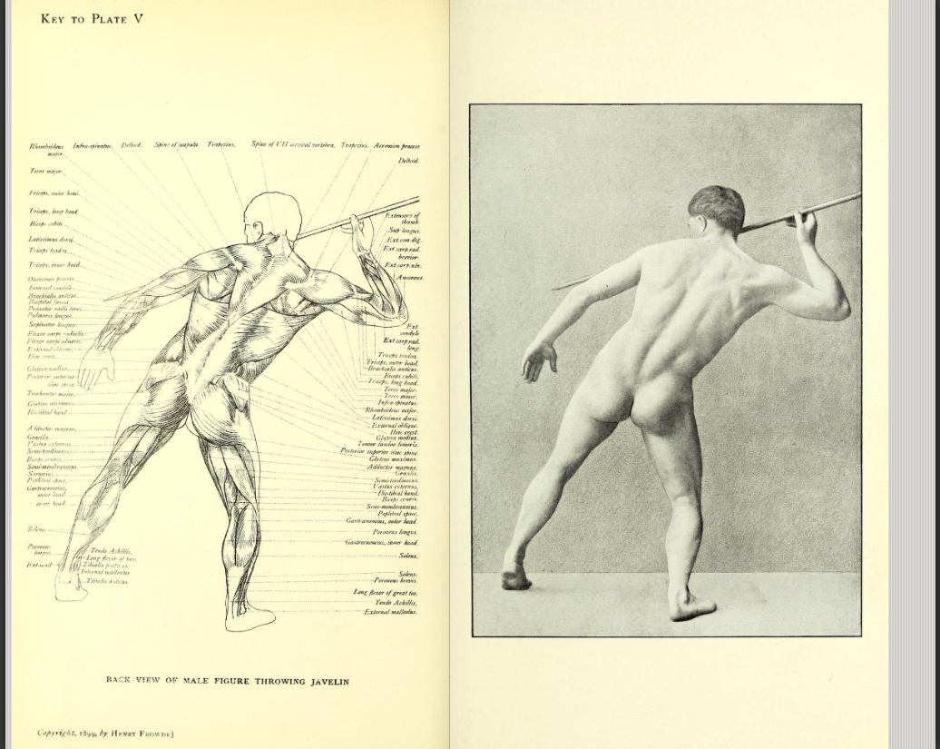 Back View Of Male Figure Throwing Javelin From A Handbook Of