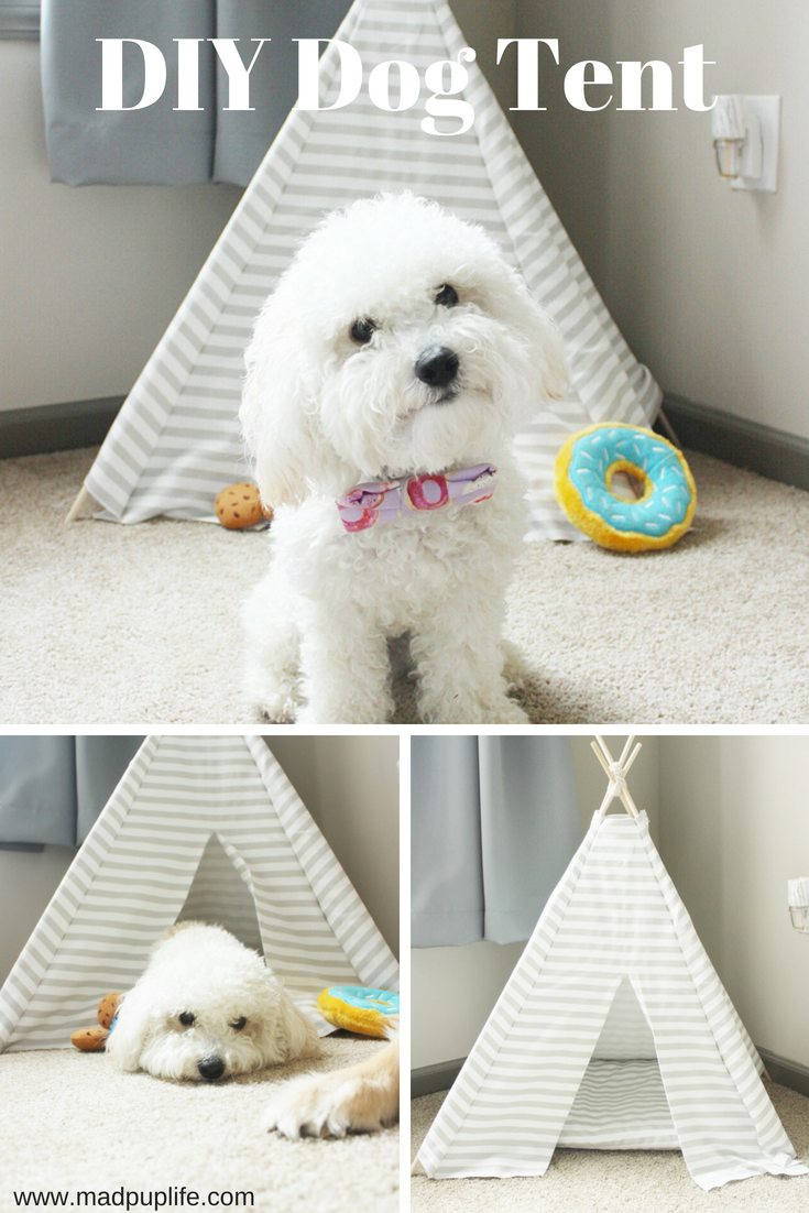 Sharing My Life With Dogs -   18 diy Dog tent ideas