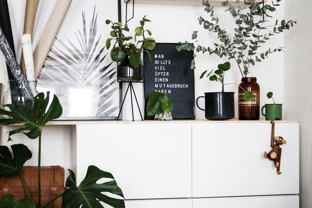 Hej home give away f r pflanzenfreunde interieur for Wohnzimmer junges wohnen