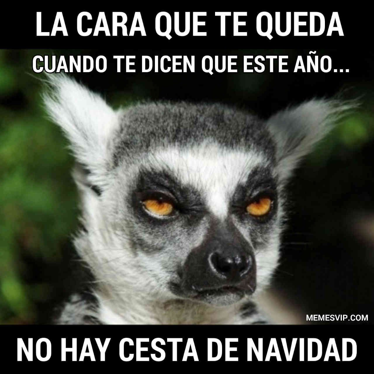 Cesta De Navidad Meme Memes En Espanol English Memes Memes Nuevos Imagenes De Risa Memes Mejores Memes