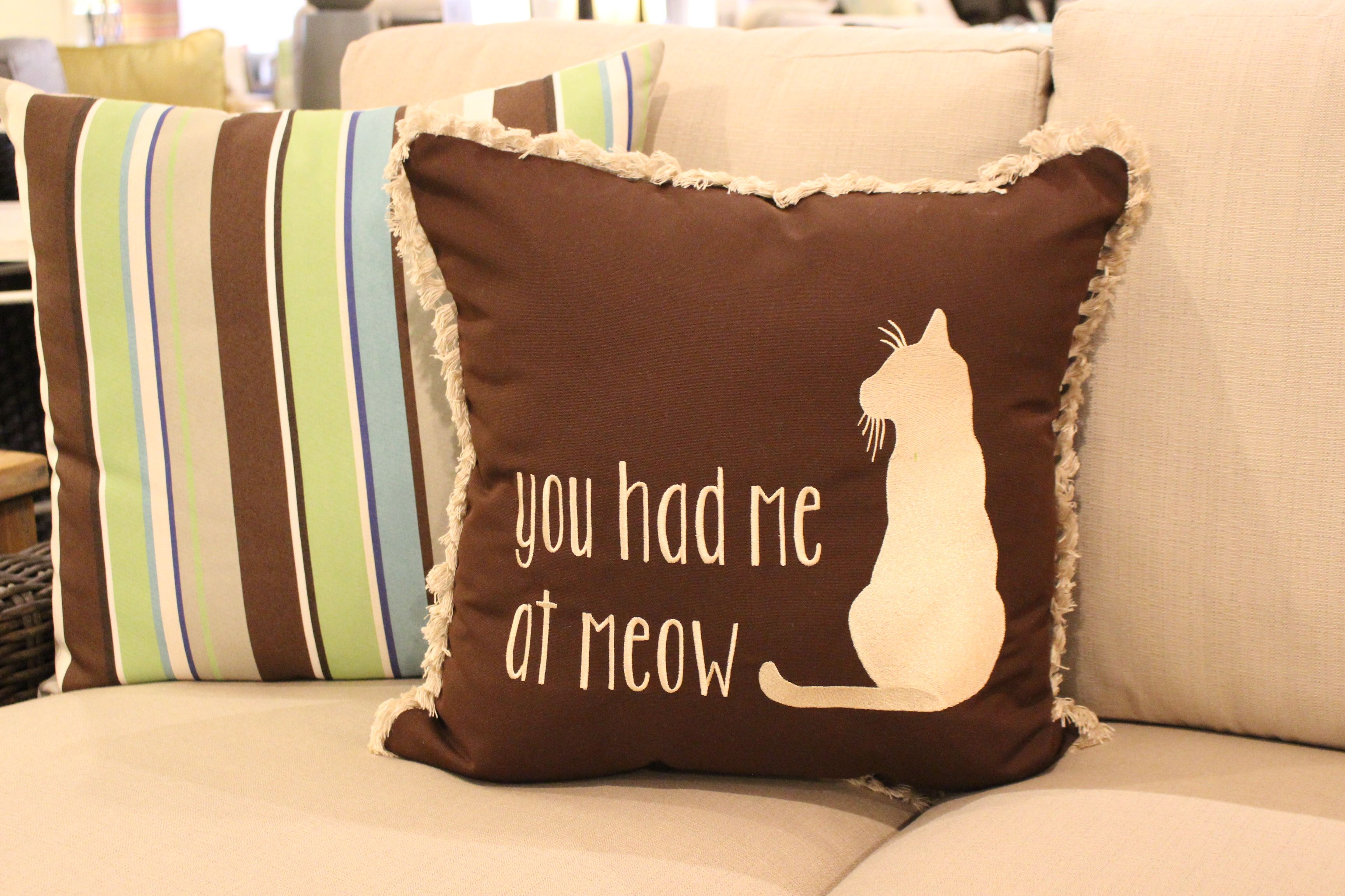 You had me at Meow Cat Pillow (With images) Cat pillow