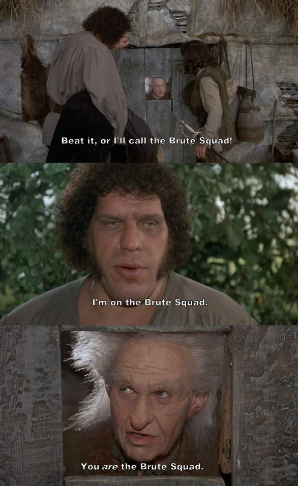Pin By Alexis Simmons On Princess Bride Princess Bride Funny Princess Bride Princess Bride Quotes