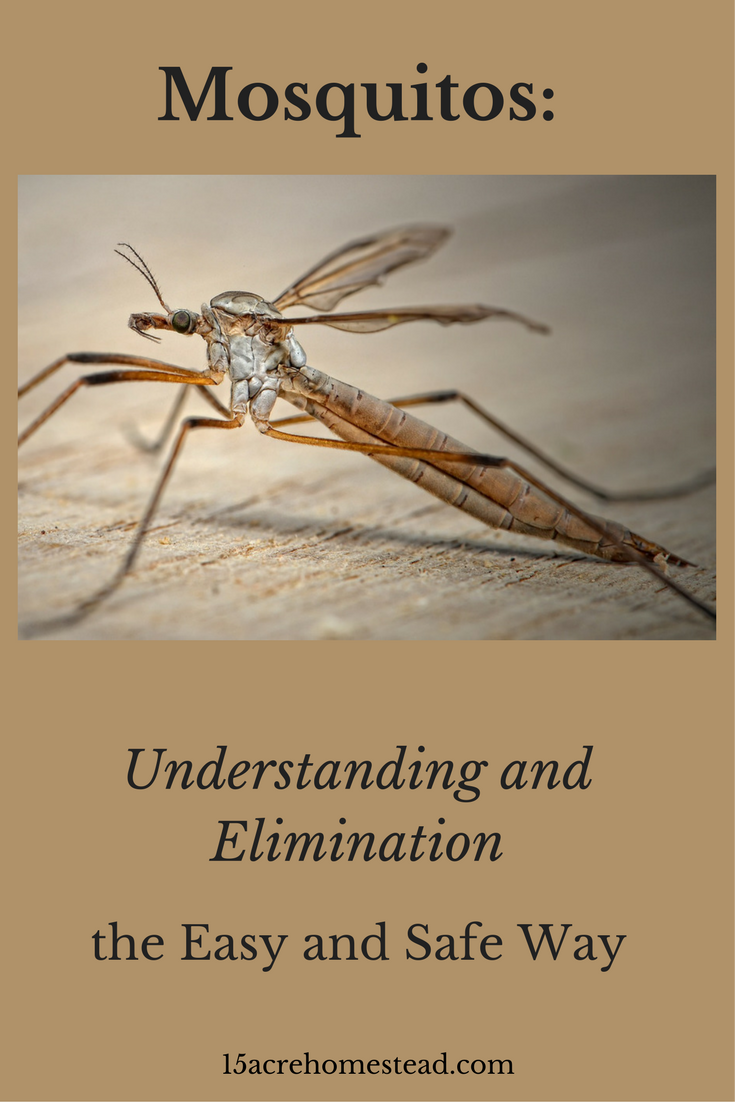 How to eliminate and control mosquitos Pest control Pinterest