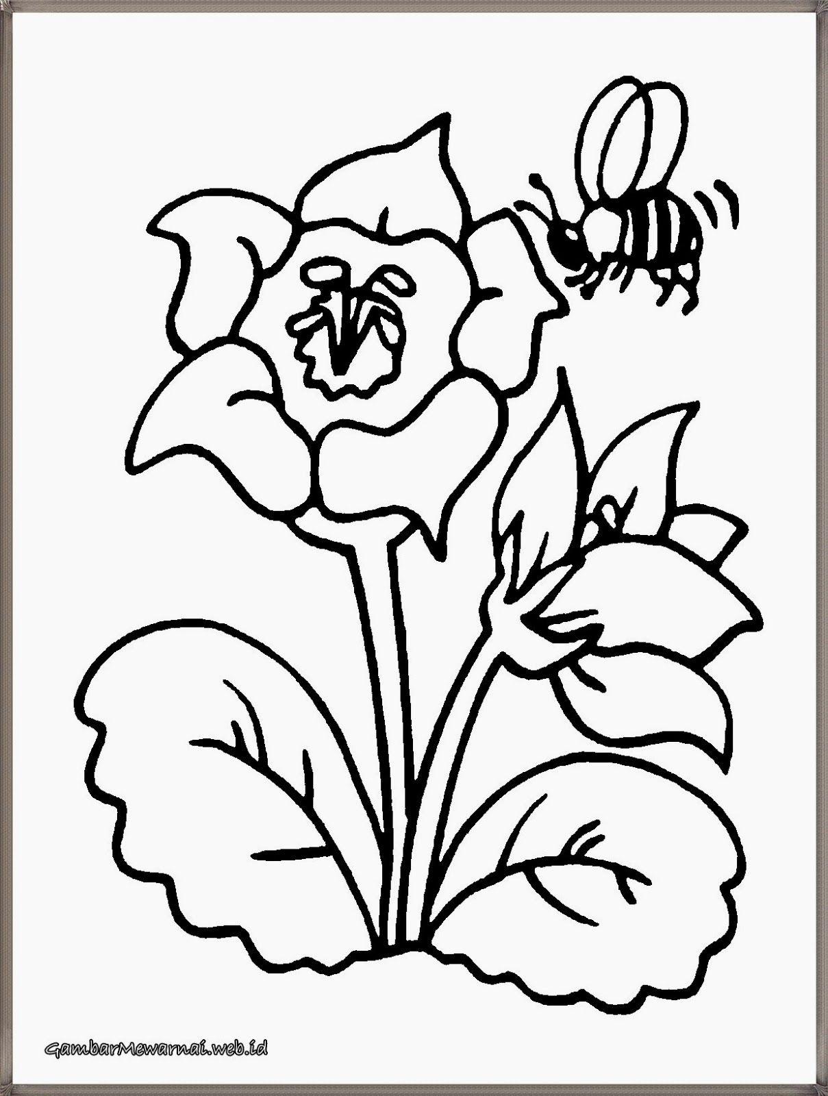 gambar mewarnai lebah madu menghisap sari bunga