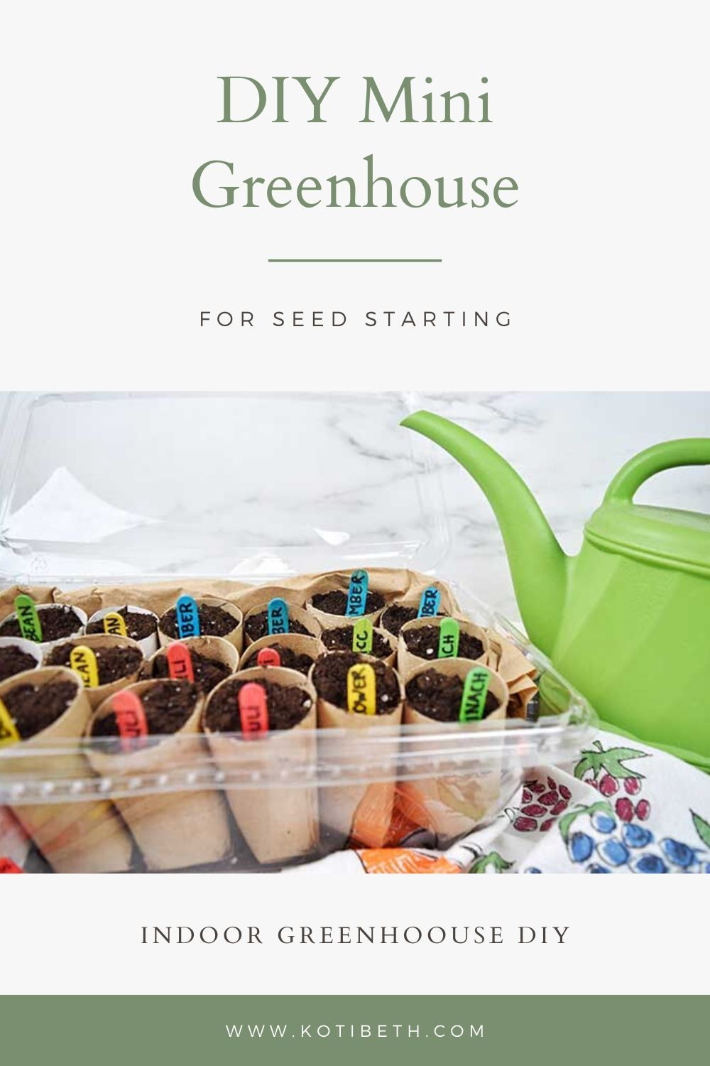 How to Make a Mini Greenhouse To Start Seeds Indoors + Tips