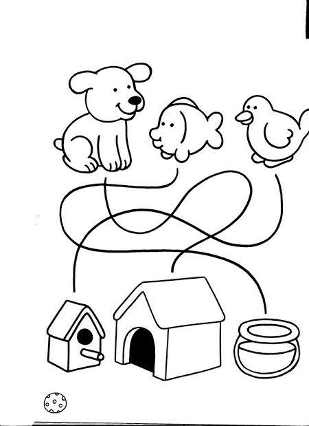 LIBRO EDUCACION INFANTIL 2 | Precalcolo e Logica | Pinterest ...