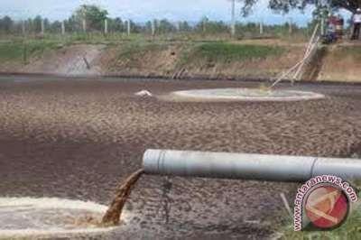 Pencemaran Pabrik Cpo Ancam Kesehatan Warga Siak Minyak Minyak Kelapa Pengasapan