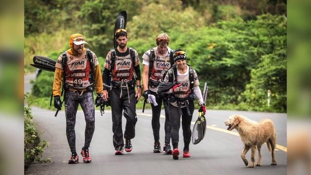A Swedish Adventure racing team travels to try and win a world title, but comes home with something way better: a stray dog that joined the team for much of the grueling 430-mile race.