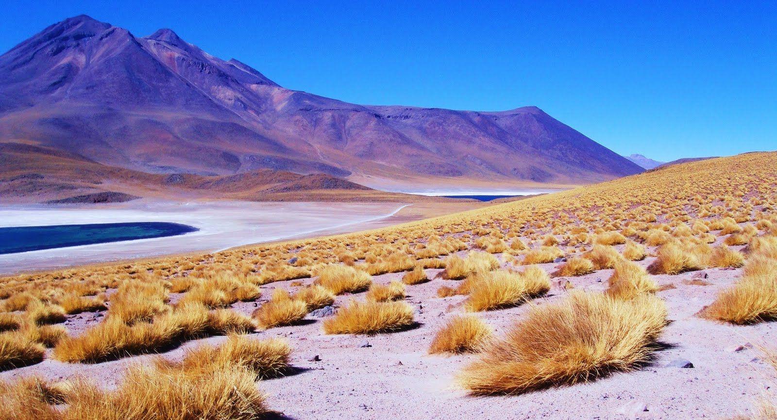 Turismo No Chile O Que Fazer Dicas Ebook Gratis Chile