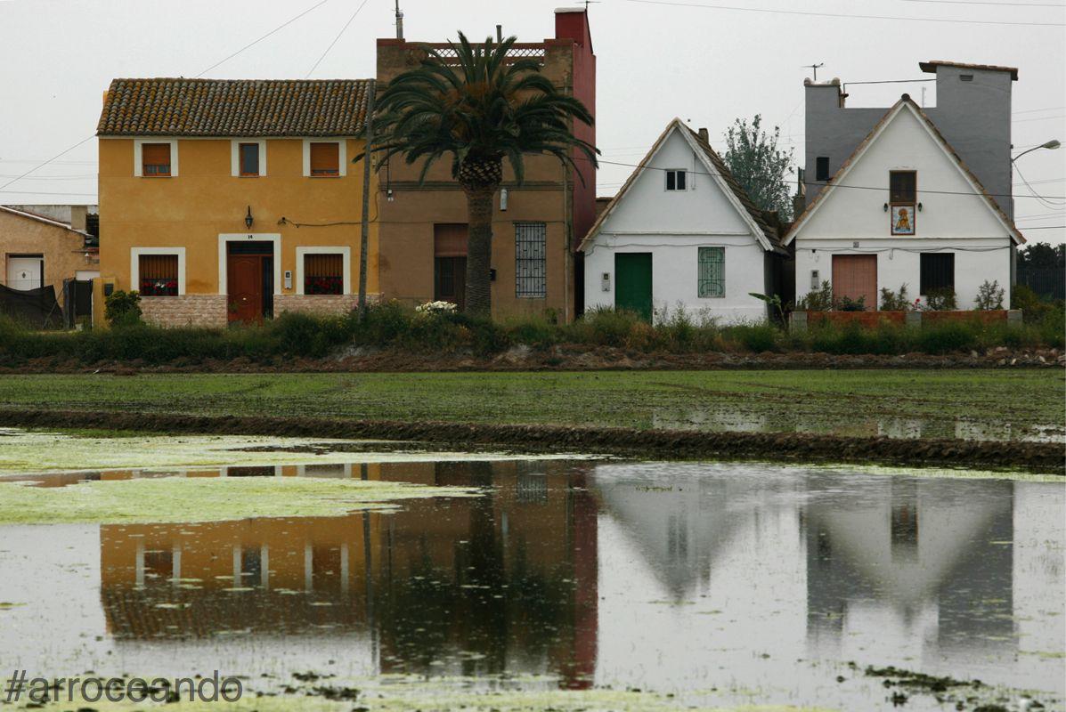 #arrozenruta es paisaje huerta valenciana