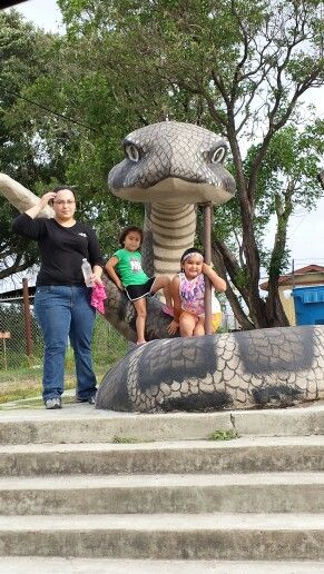 Largest rattlesnake Freer, tx. City of Freer clean up day