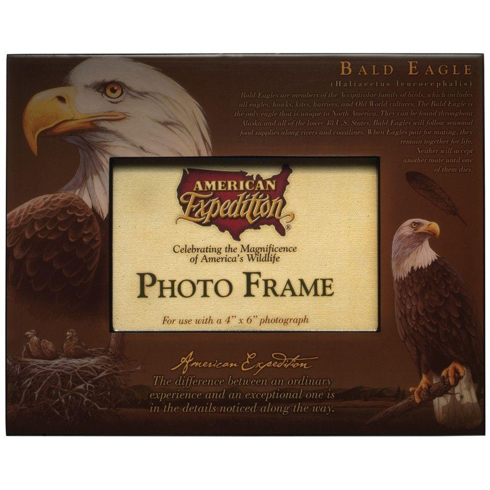Bald Eagle Photo Frame