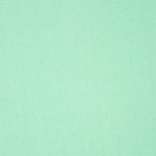 Mint Green Solid Cotton Jersey Knit Fabric A Beautiful Lighter Mint Green Color Solid Cott Sherwin Williams Paint Colors Green Paint Colors Blue Paint Colors