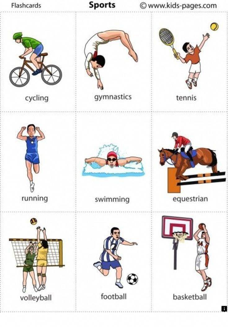 виды спорта на английском в картинках сын