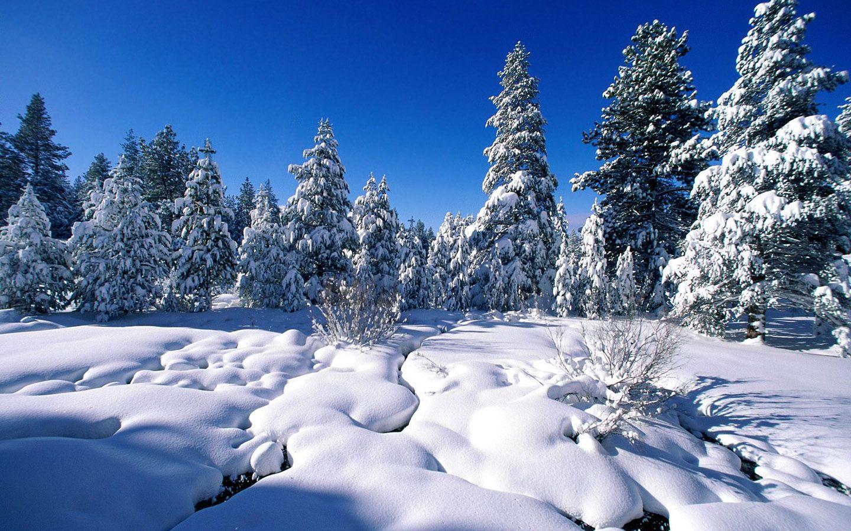 Mountain Scenes Wallpaper Images Of Winter Snow Hd Wallpapers Download Free Wallpaper Hintergrund Landschaft Landschafts Tapete Schone Weihnachtsbilder