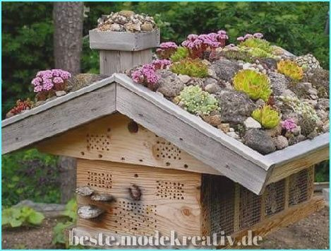 Photo of Elegante 60 Atemberaubende Sukkulenten-Dekoideen für den Innenbereich