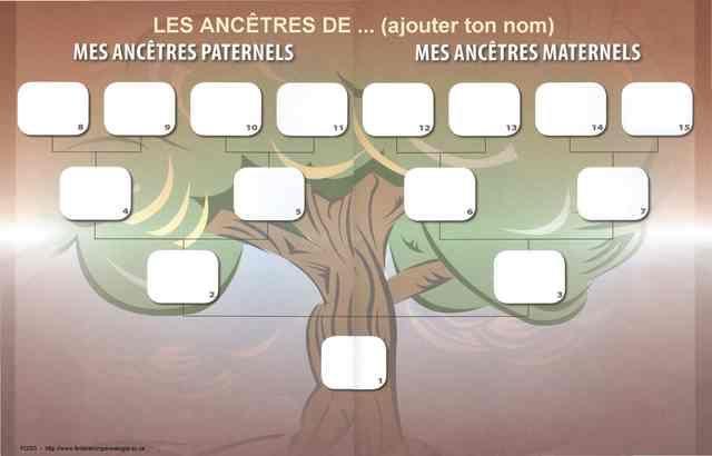 R sultat de recherche d 39 images pour arbre g n alogique gratuit imprimer jeannot pinterest - Imprimer arbre genealogique ...