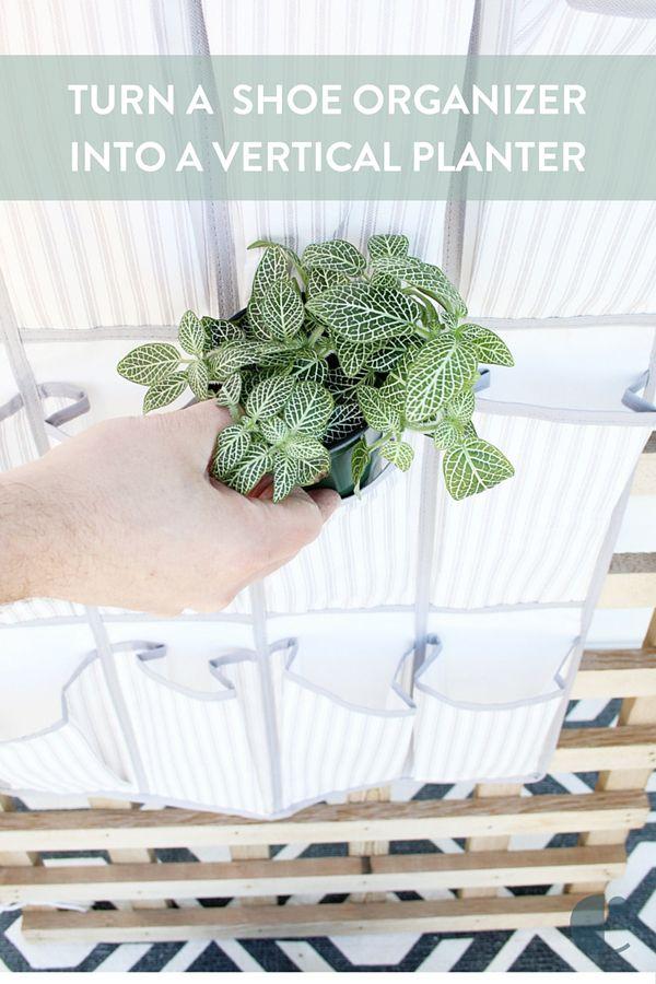 Turn a Shoe Organizer into a Vertical Planter