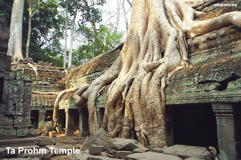 Prohm Temple