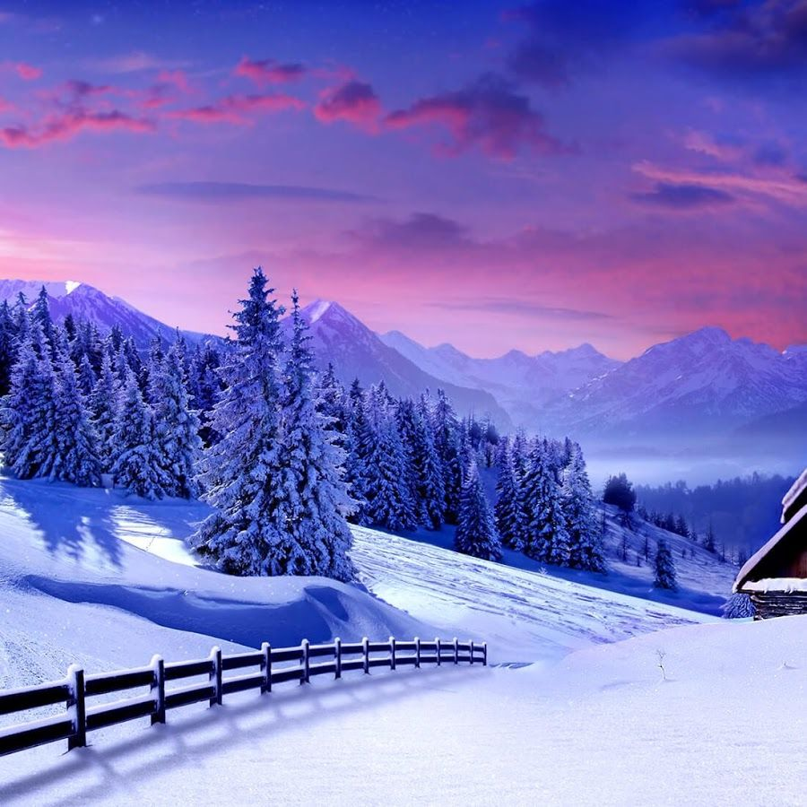Winter Nature Live Wallpaper