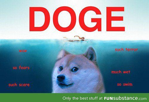 Doge Funsubstance Com Doge Meme Funny Pictures Funny Images