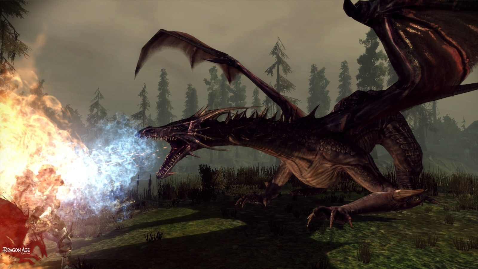 Dragon Wallpapers 4k 1600x900 Px Dragon Images Dragon Age Dragon Games
