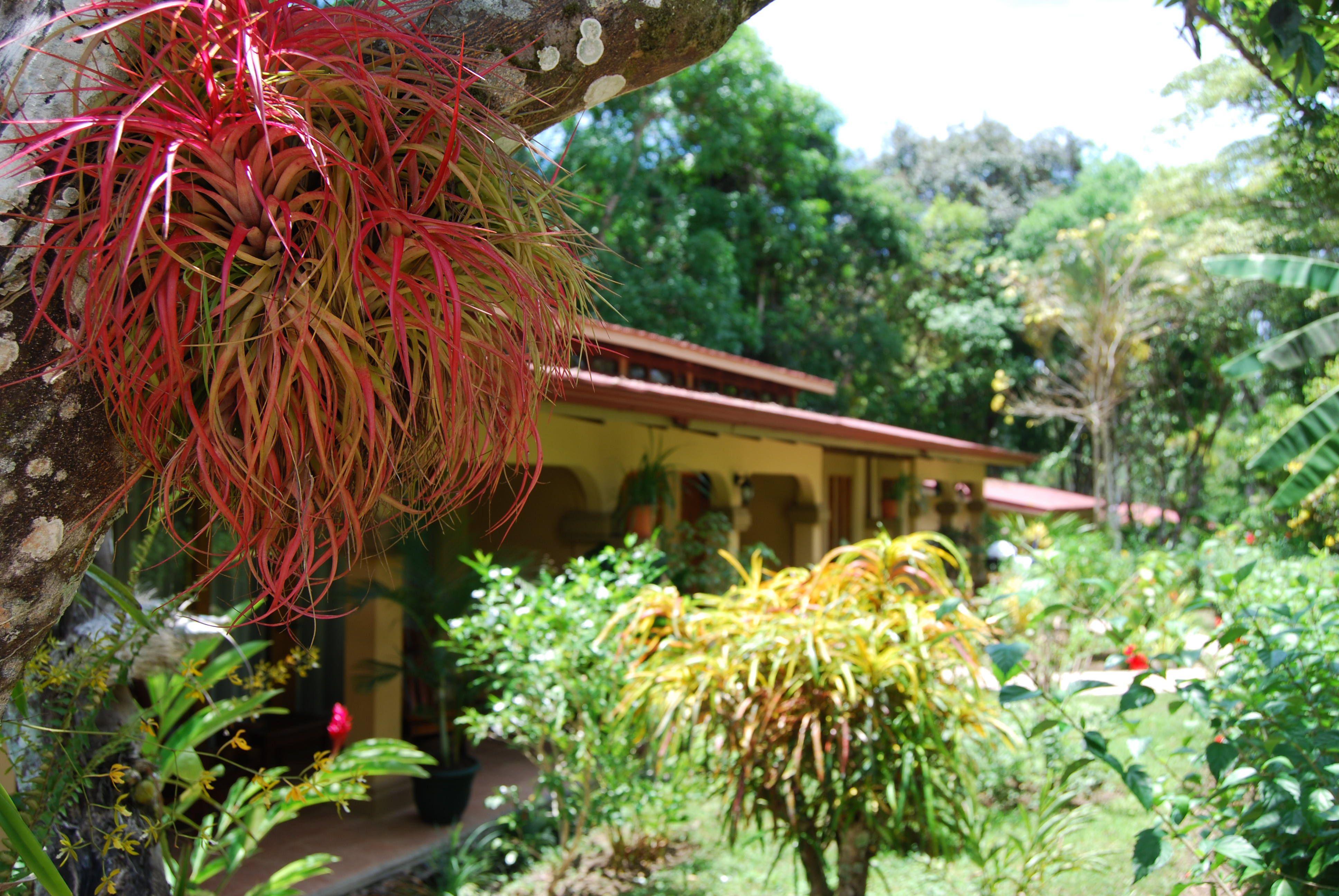 Jaco costa rica hotel room for more info www docelunas com