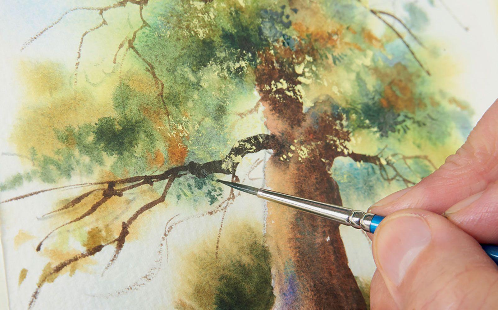 Peindre En 30 Minutes Chrono Arbres Forets A L Aquarelle