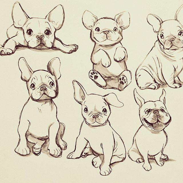 How To Draw A French Bulldog Easy Cartoon Puppy Youtube Cute