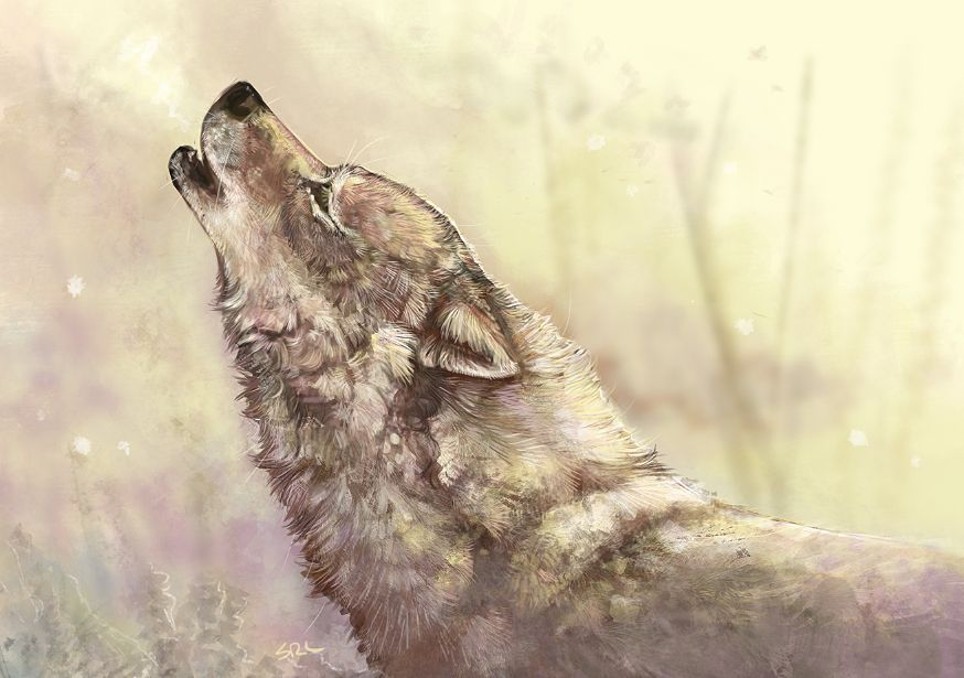 Howling by daisy7