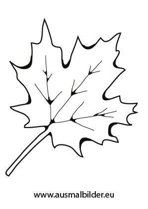 Ausmalbilder Herbst Ausmalbild Ahornblatt Ausmalbilder Herbst Ausmalbild Ahornblatt