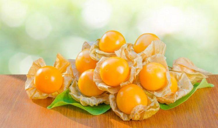 Aguaymanto: Propiedades y beneficios de la fruta de los Andes - Caretas | Beneficios de la fruta, Fruta, Uchuva