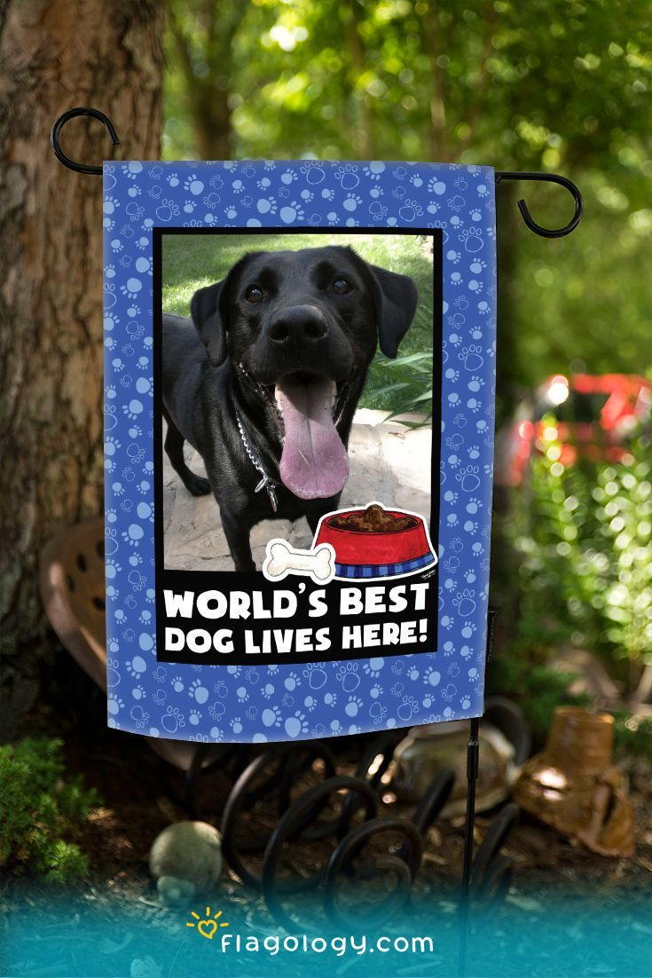 Worldu0027s Best Dog Garden Flag! Personalize With Your Dogu0027s Photo In Minutes!  Ships In 5 7 Days. Printed On High Quality Fabric In North Carolina.