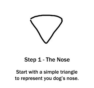 How to Draw a Dog - Step 1: The Nose The shape of a dog's nose is roughly like a triangle. Start with this as your first step. Put it in the middle of your paper so you have plenty of room to draw.
