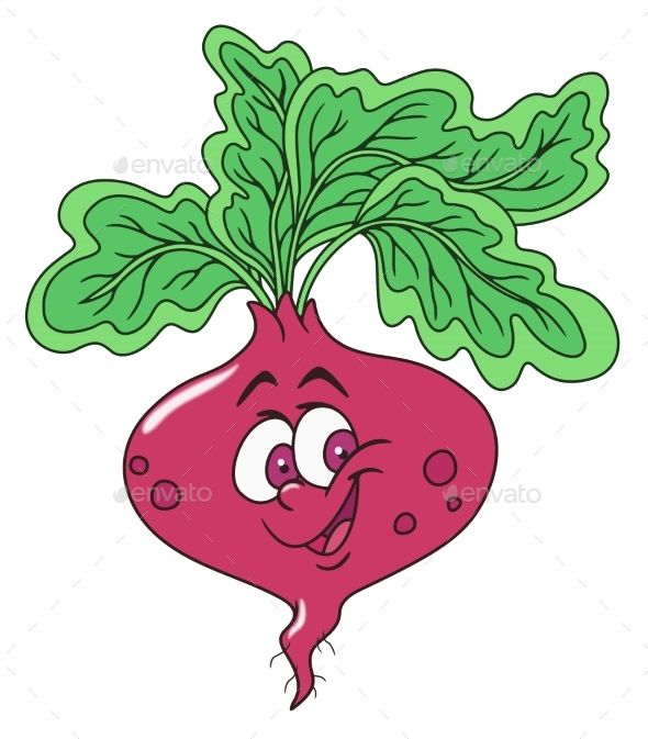 Fresh Beetroot Cartoon Graphics Inspiration Watermelon Cartoon Cartoons Vector