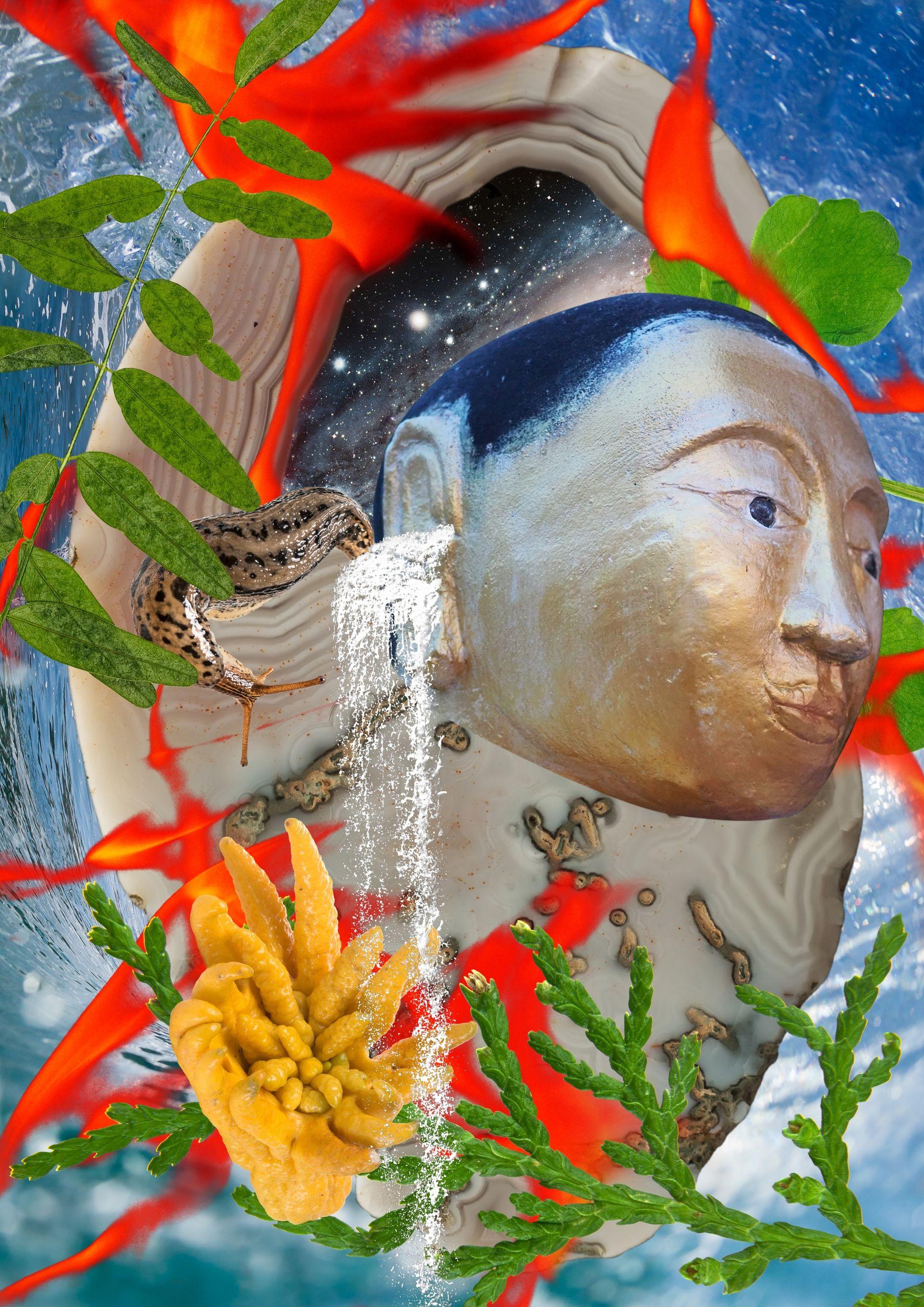 Nature+Emotion42 #meditation #mindfulness #