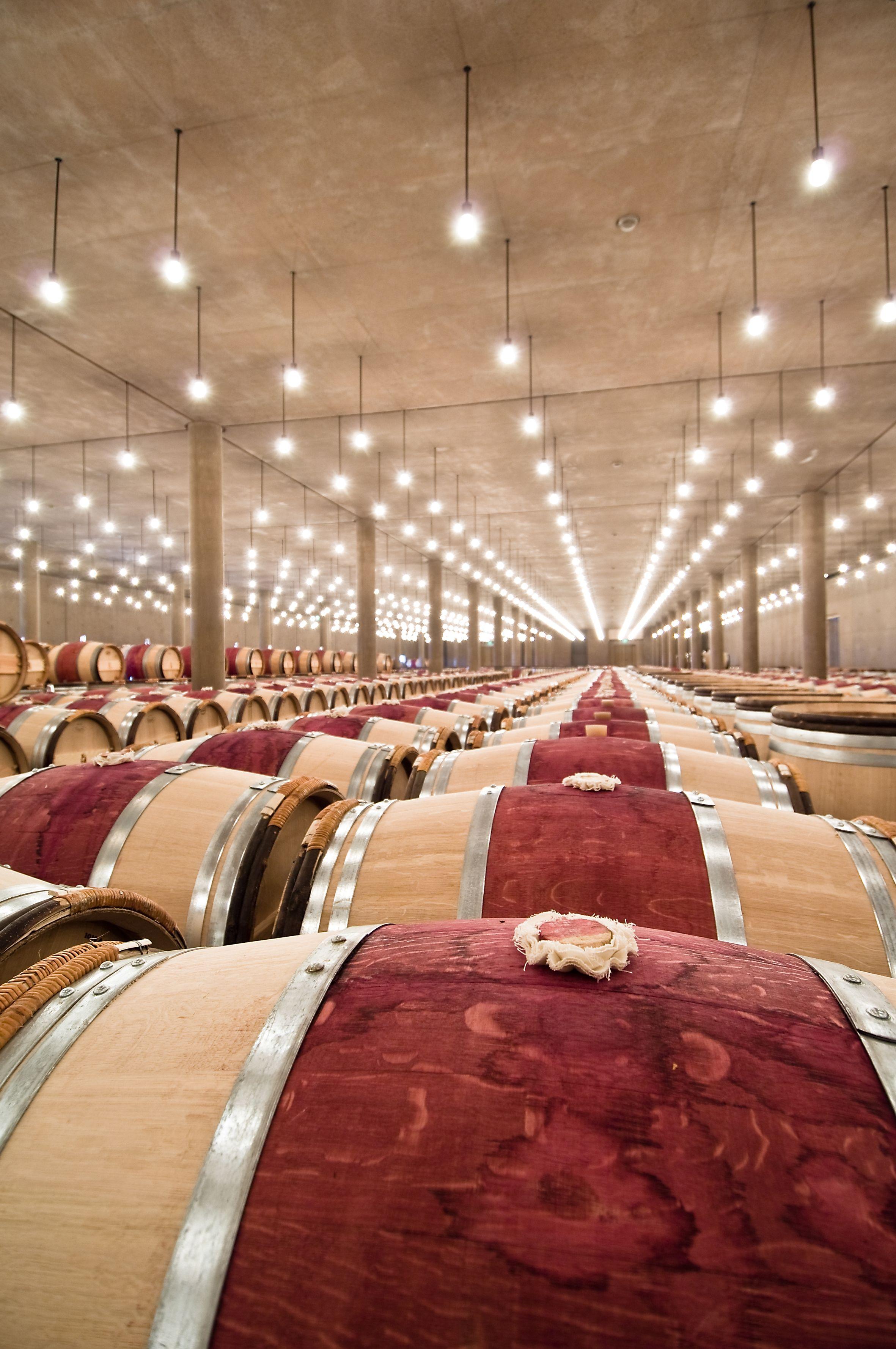 Weinkeller Winecellar Bordeaux Bordeauxwein Weinfass Weinfasser Bordeaux Wein Weinland Weinkeller