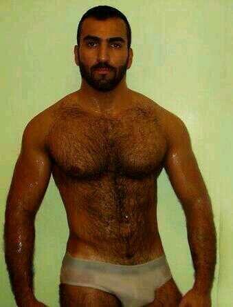 Gay hairy boyz