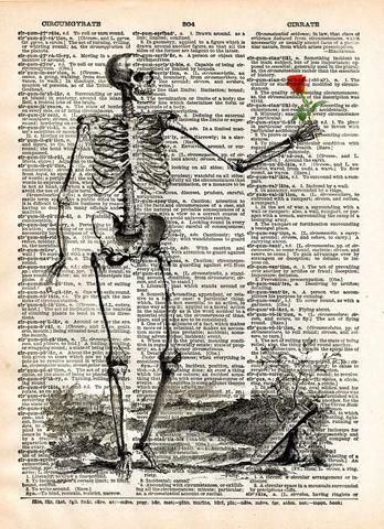 Skeleton with rose, vintage anatomy, vintage skelton illustration ...