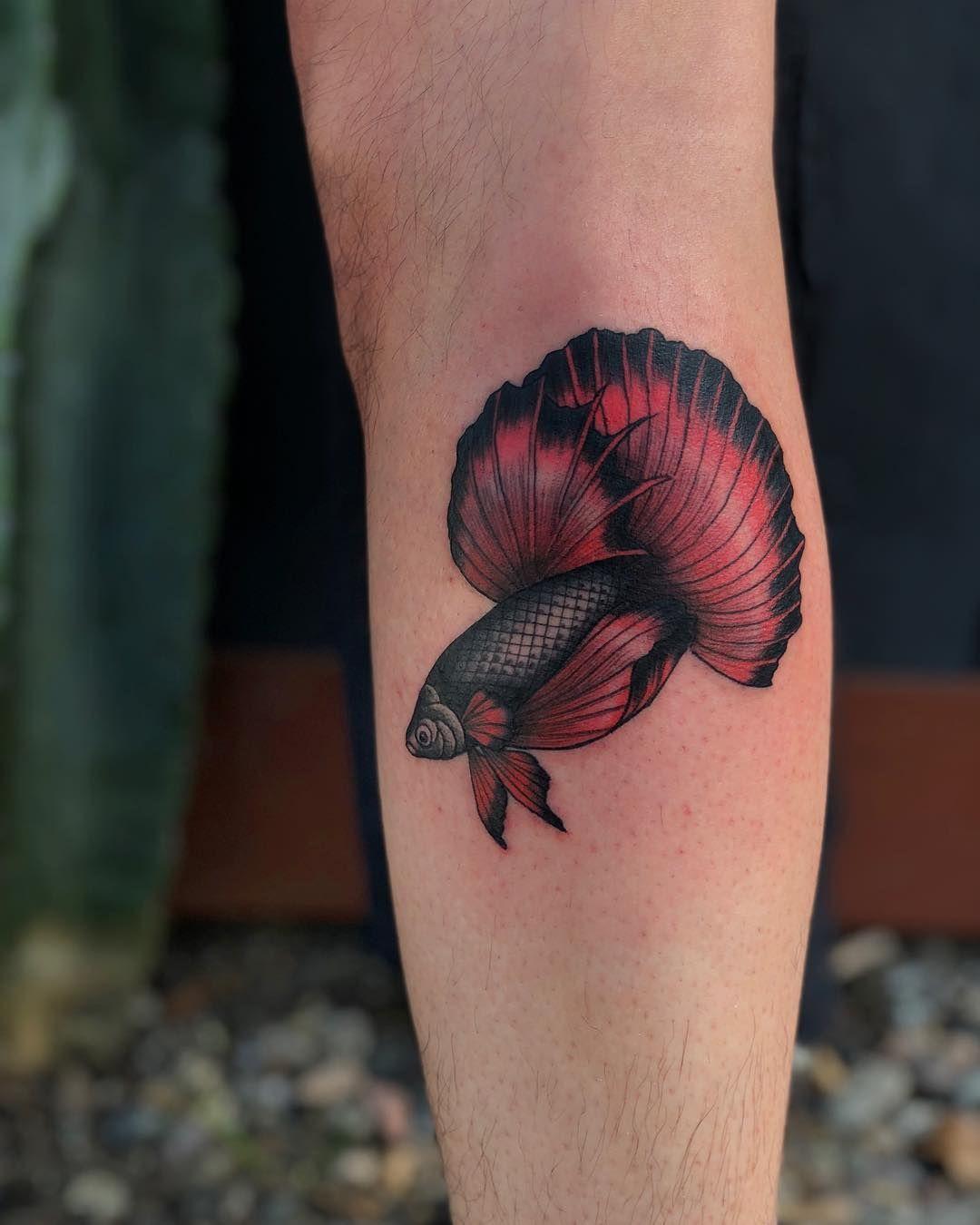 Beta Fish Tattoo Tattoo Ideas and Inspiration Collar