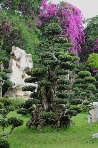 Cloud Trees Jardines Pinterest Naturaleza, Paisajes y Jardines - paisajes jardines