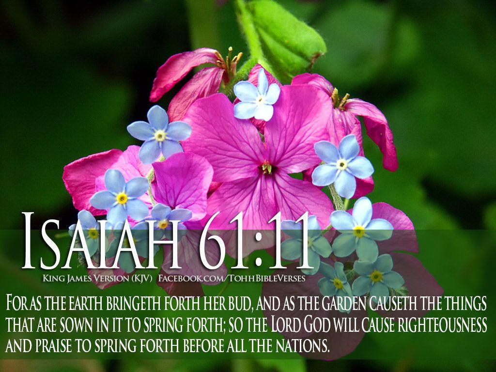 Resultado de imagen para bible verses about life