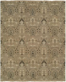 Generations Natural Apogee Z Cgc Rug Southwestern Rectangle 3 X 5