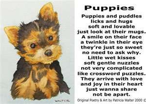 Cute Dog Poem By Angel62599 Dog Poems Cute Puppy Breeds Dog Poetry