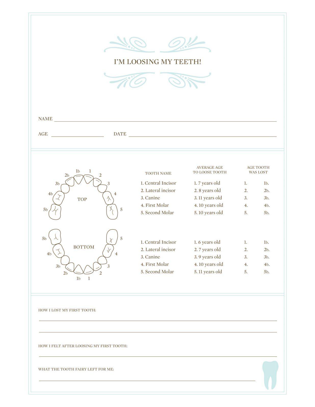 Printable Tooth Loss Chart For Kids